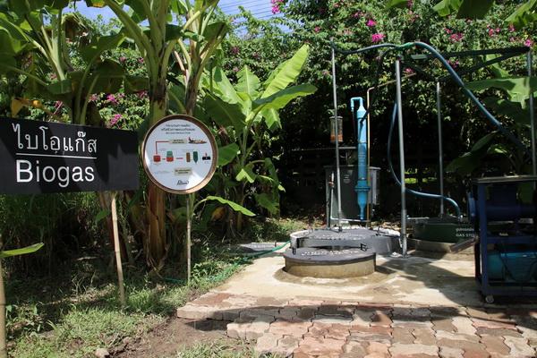 sam7 - สวนสามพราน-สามพรานโมเดล จุดประกายท่องเที่ยววิถีอินทรีย์ - C'mon